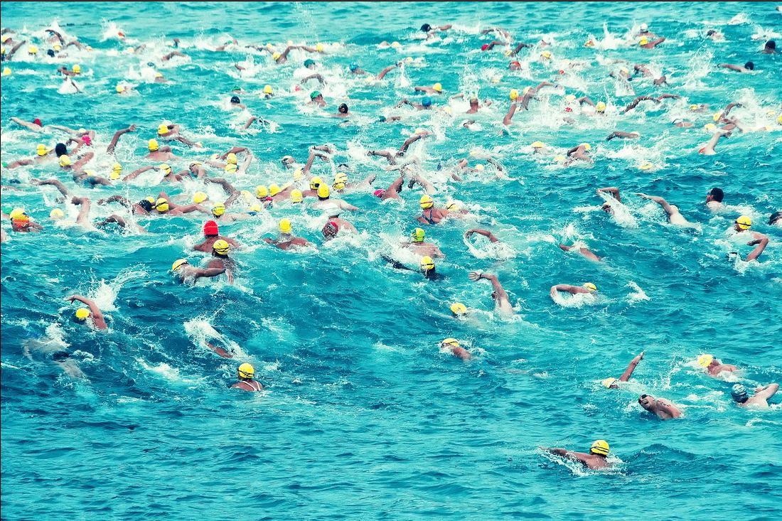 1100 x 733 png 642kBSwimming