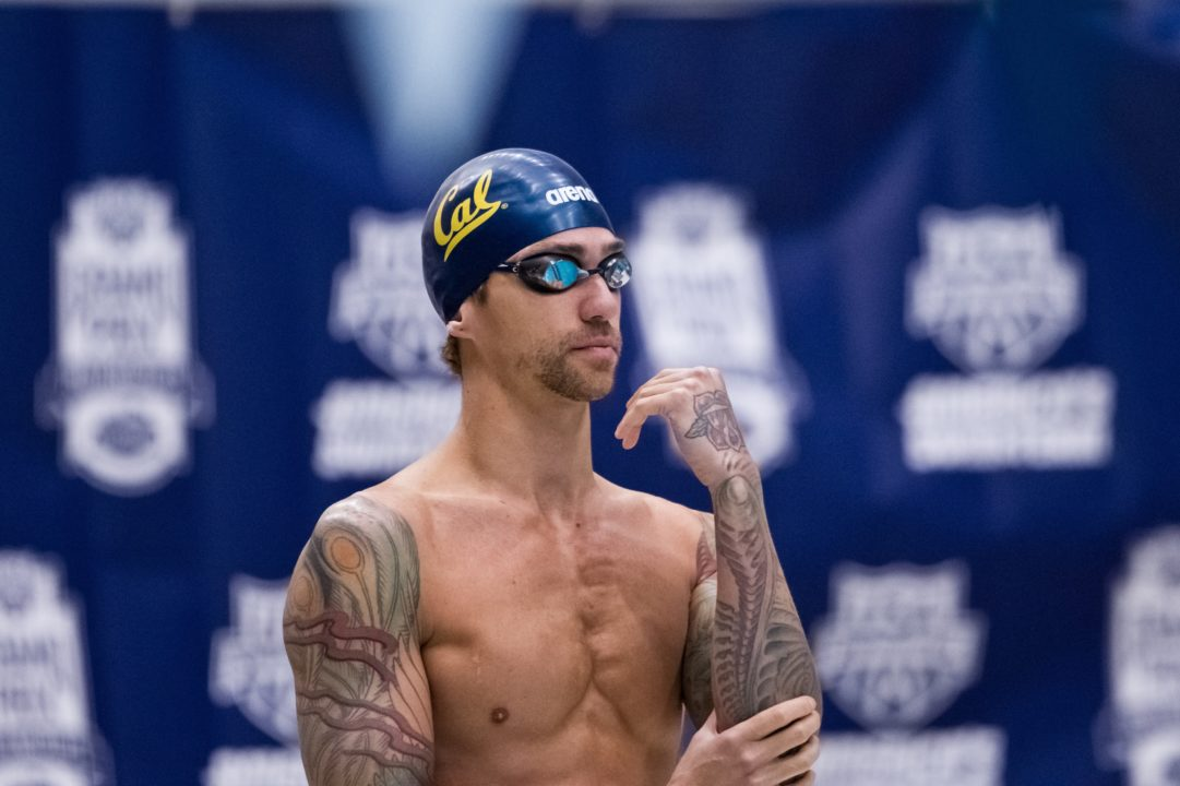 The Swimmers' Tattoo Photo Vault