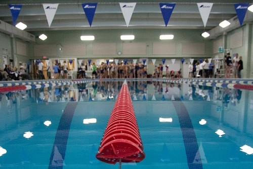 "USA Swimming Releases ""Model Action Plan"" for Bullying; Electronic Communication"