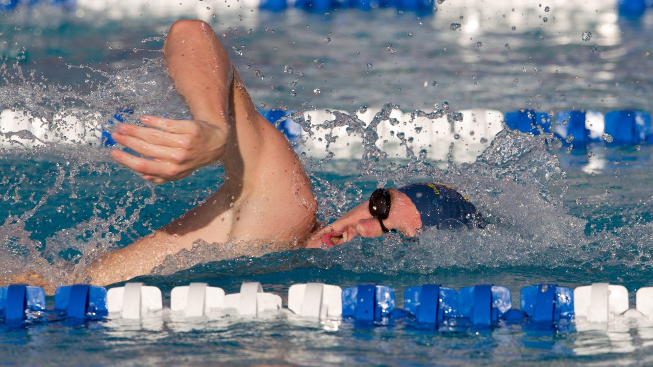 The Andrew Gemmell Swimming Photo Vault
