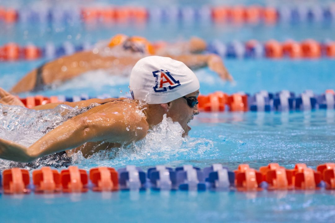 Arizona Bears Down on Golden Bears; Bookends With Dominant Relay Swims