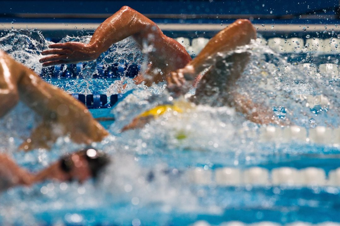 Impressive men's 100 freestyle on Day 4 of Russian Championships