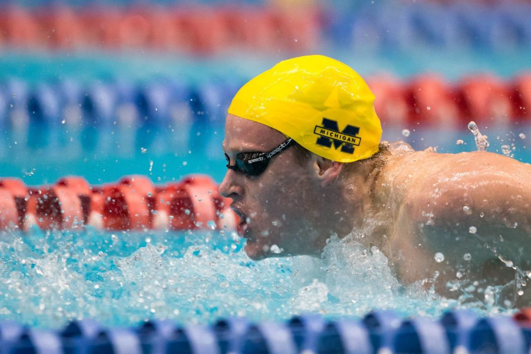 Bosch, Haughey Post Multiple NCAA-Leading Times at Michigan Tri Meet