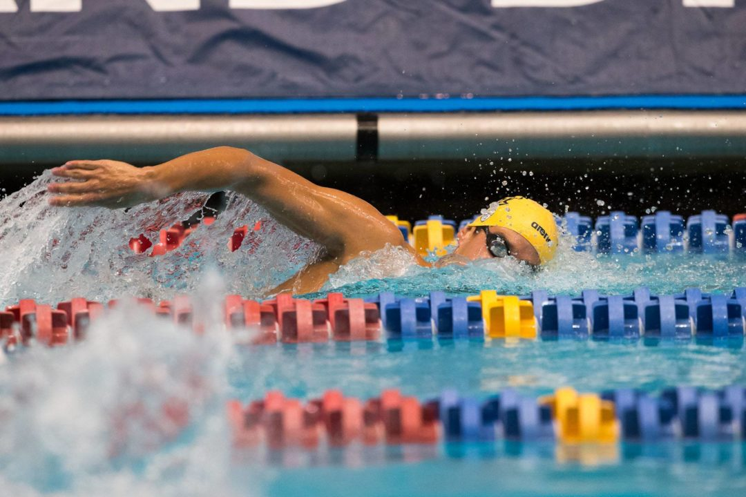 Murphy, Katis and Hamilton sweep Cal vs Stanford Triple Distance meet