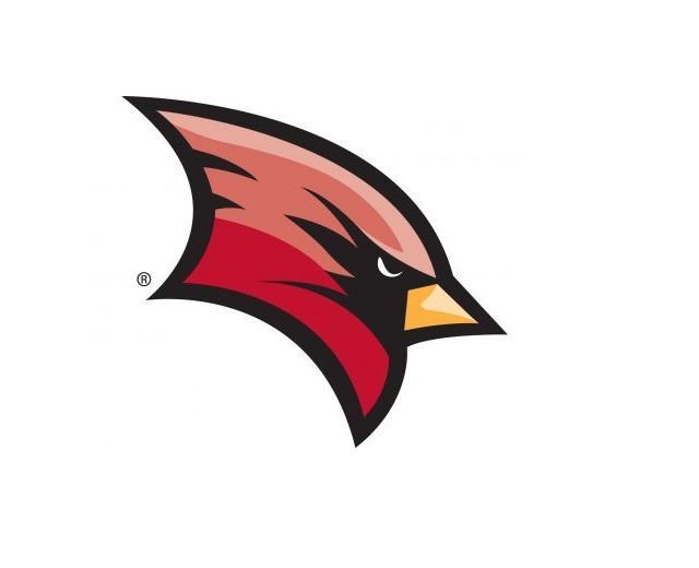 NCAA Sanctions Saginaw Valley State for 137 Infractions in 15 Sports