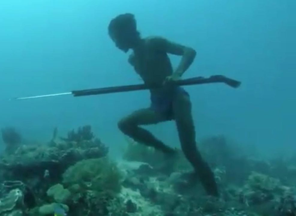 Swimmer Spearfishing Five Minutes on One Breath