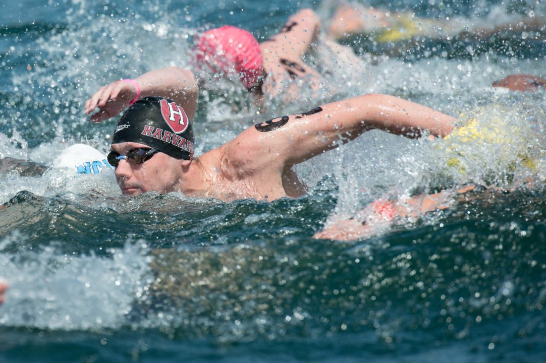 Olympian Alex Meyer to give open water swimming clinic at the International Open Water Swimming Festival April 12-13