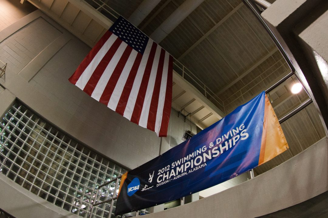 Ohio State Hires World Champs Head Coach Justin Sochor As New Diving Coach