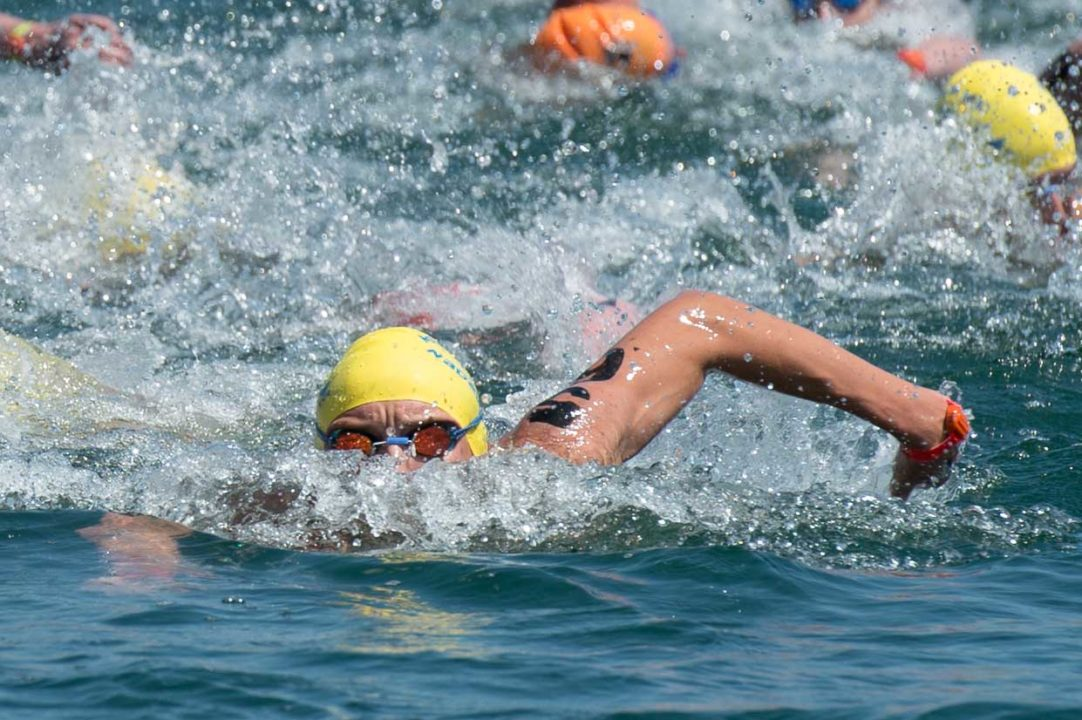 USA Swimming Open Water National Team Rosters