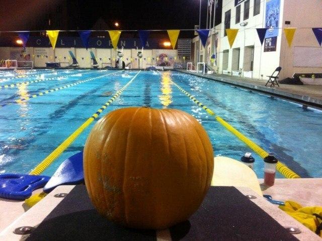 Via Yuri Suguiyama @coach_yuri 31 Oct Cal men's D group had a visitor at practice this morning