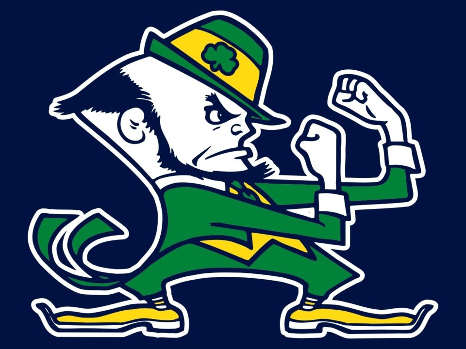notre dame picks up verbal from michigan breaststroker  imer jack russell