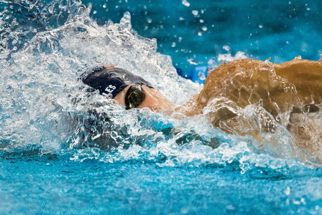 Hohmann, Dressel improve off-event times at Saturday finals of Florida Last Chance
