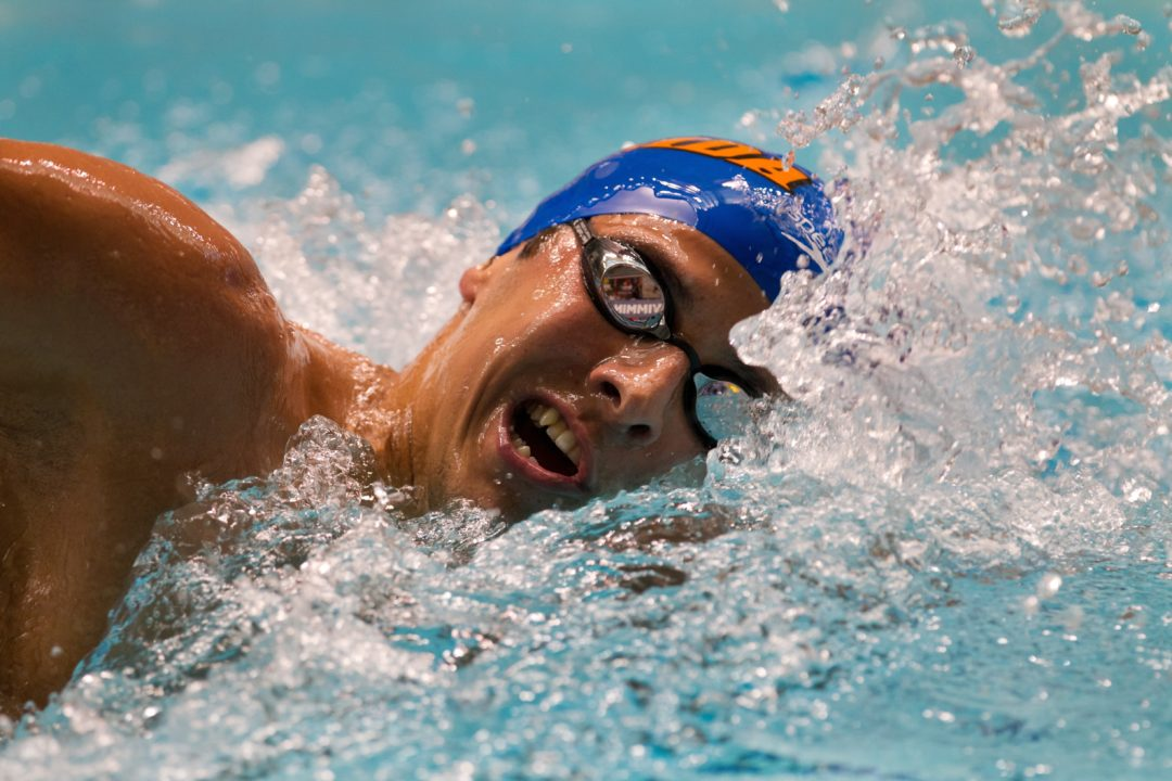 Florida's Omana, D'Arrigo Named SEC Male Swimmers of the Week