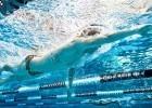 Jimmy Feigen, underwater (courtesy of  rafael domeyko)