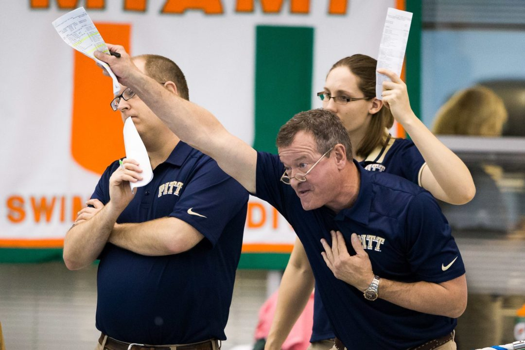 Pitt Adds Verbal from Backstroker Shannon Hochkeppel
