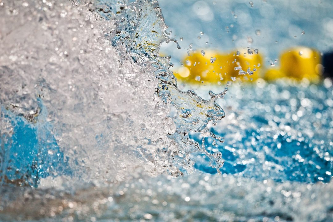 Verlinden Goes World Leader in 100 Fly on Day 3 of Eindhoven Swim Cup