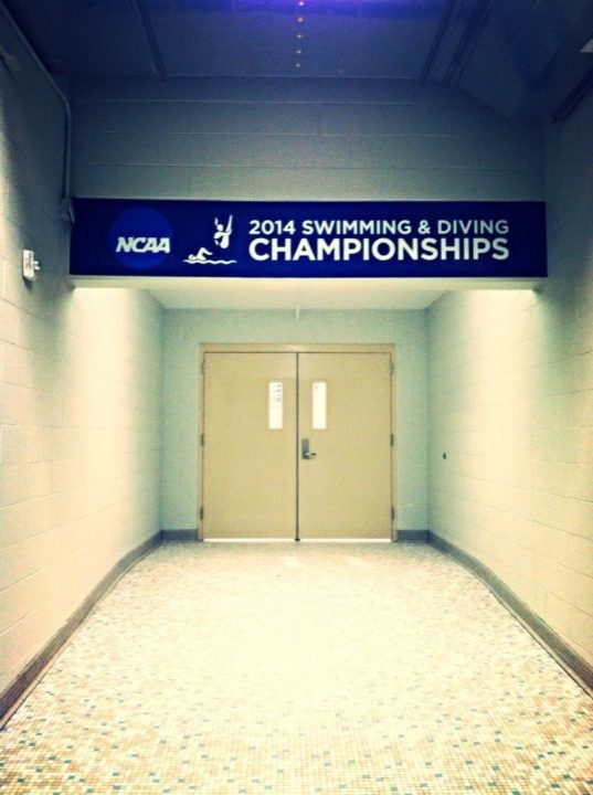 2014 Division II National Swimming Championships- Men's Meet