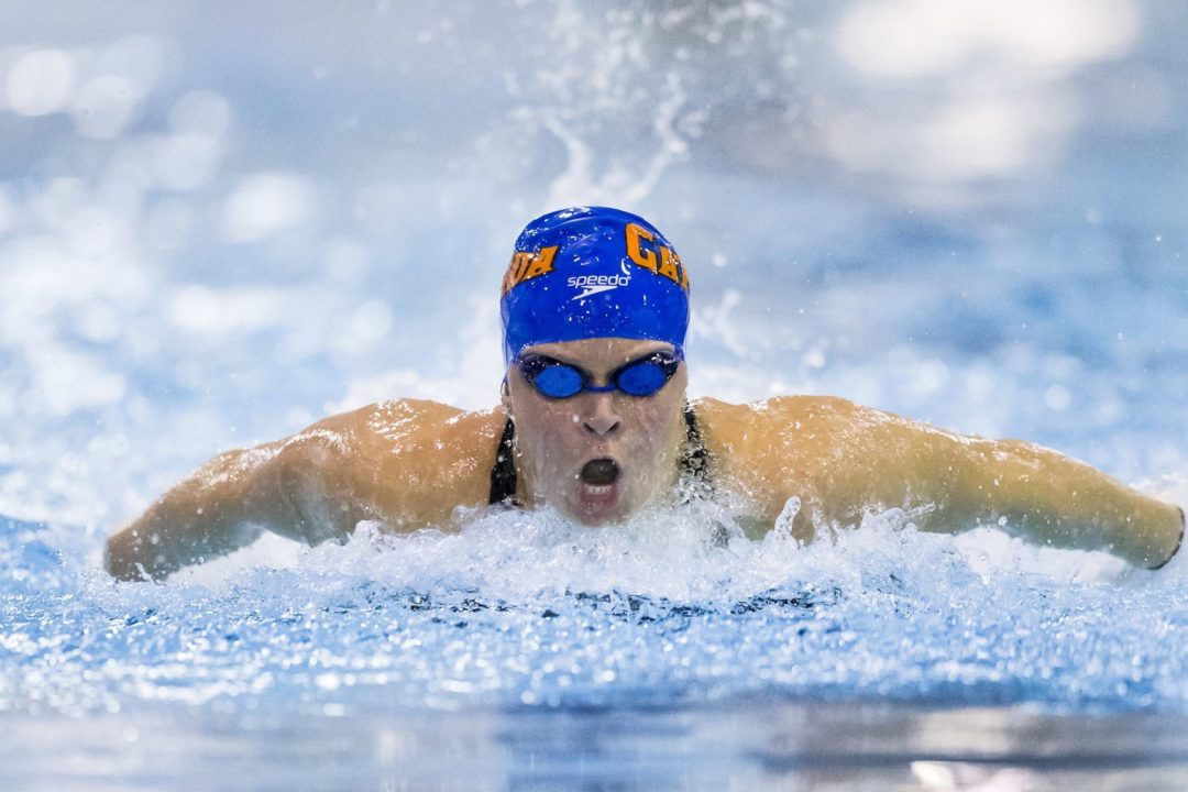 Beisel to Swim 200 Fly, No 200 IM at 2014 NCAA Championships