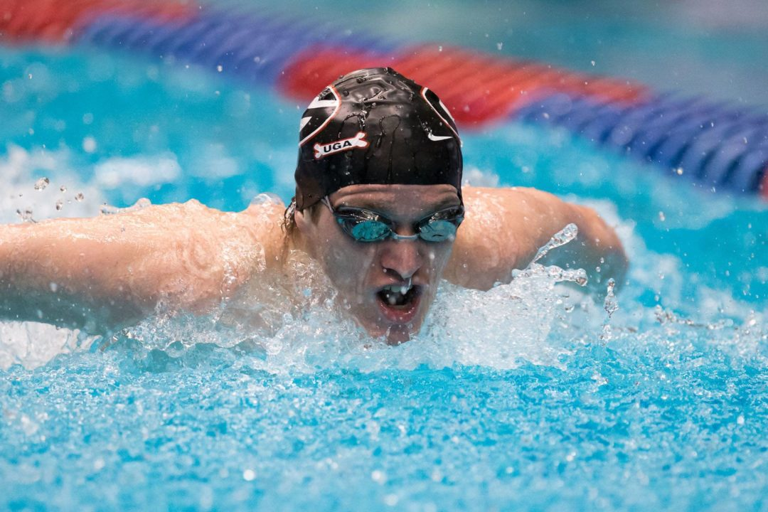 Four Swimmers, Including Two Georgia Bulldogs, Nominated for SEC's McWhorter Post-Graduate Scholarship
