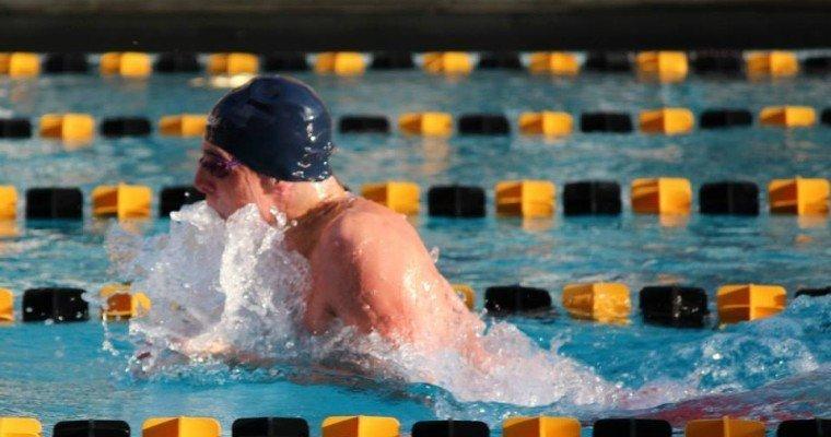 2014 California Community College Swim and Dive State Championships: Fan Guide