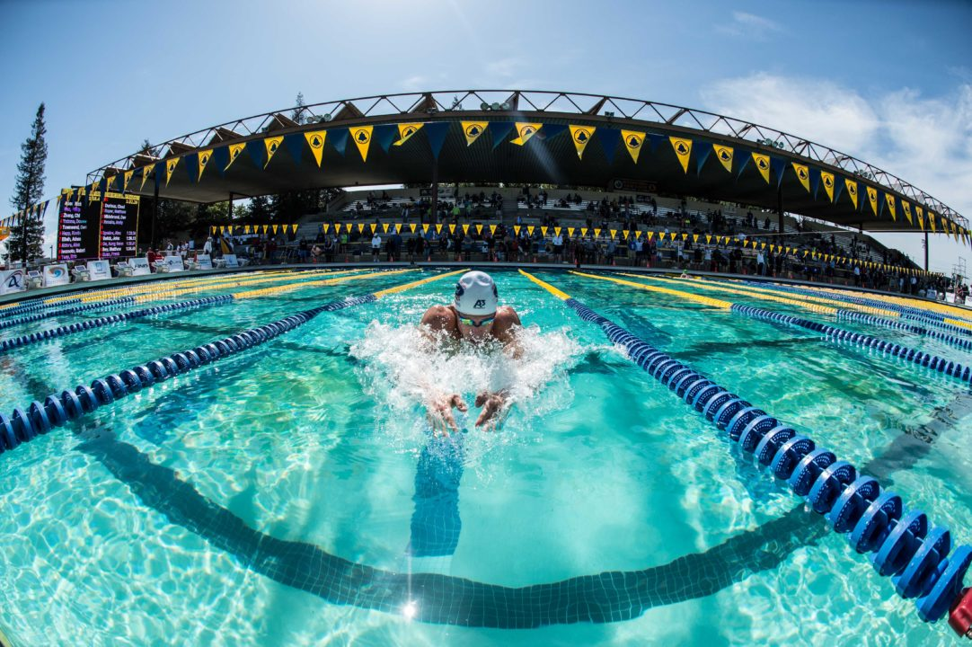 The show is over but the memories live on: USMS Nationals Photo Vault Day 4