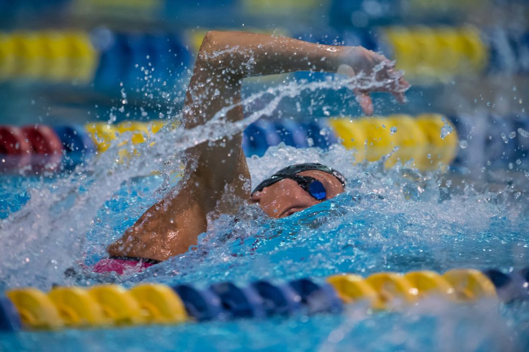 FINA World Cup Prize Money Breakdown: $100,000 to the male and female winners