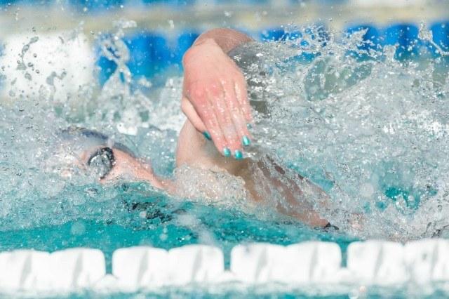 Swim job san diego state university seeks women 39 s - San diego state university swimming pool ...