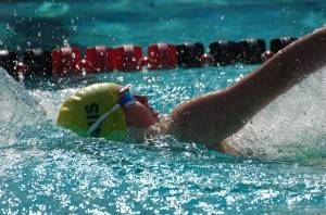 Maddison Elliott of Australia women's 100 back S8. Photo: Anne Lepesant