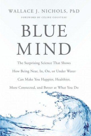 BlueMind_bookcover
