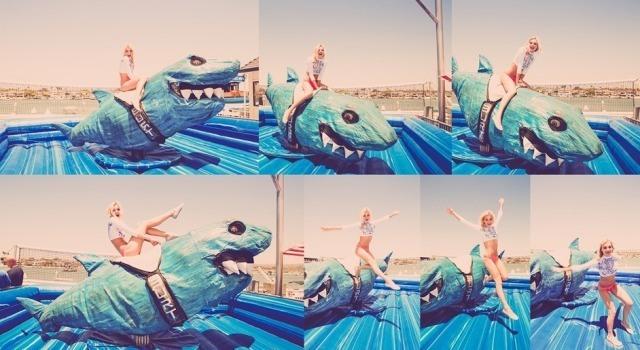 tabi-mallyce-shark-action