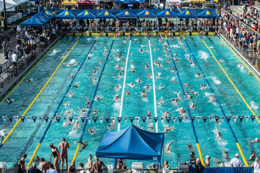 Shouts from the Stands: 5 Dangerous Misconceptions for Swimming Parents to avoid