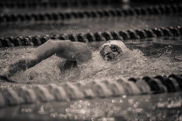 Tyler Clary in the 500 free (photo: Mike Lewis, Ola Vista Photography)