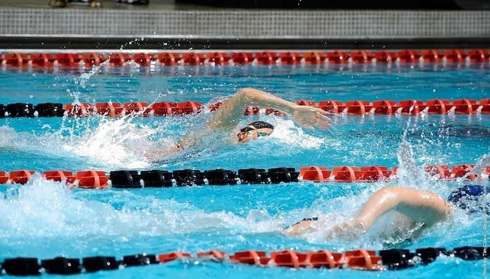 Daily Swim Coach Workout #24