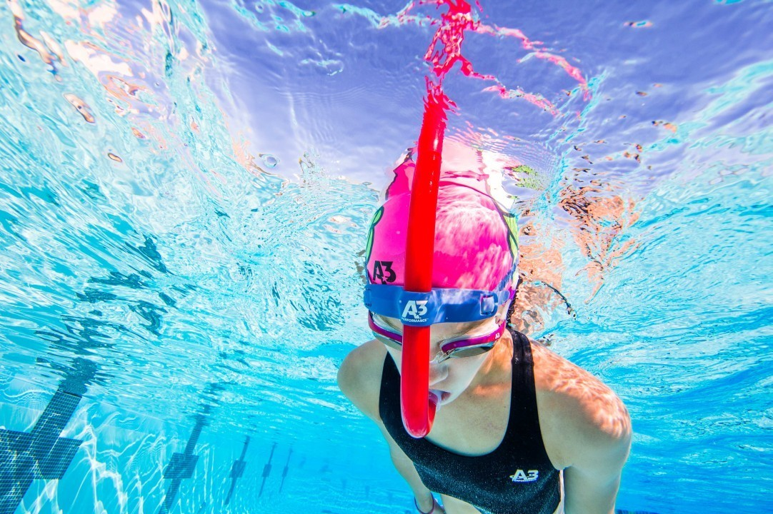 Practice Tips and Exercises for Beginner Swimmers