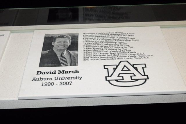 Auburn Swimming Wall of Fame on Saturday, April 11, 2015 in Auburn, Ala.  Anthony Hall/Auburn Athletics