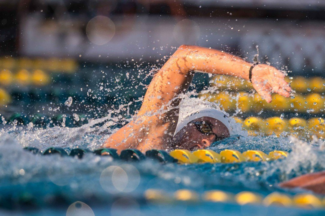 2016 Swammy Awards: Caribbean/Central Am. Male Swimmer of the Year