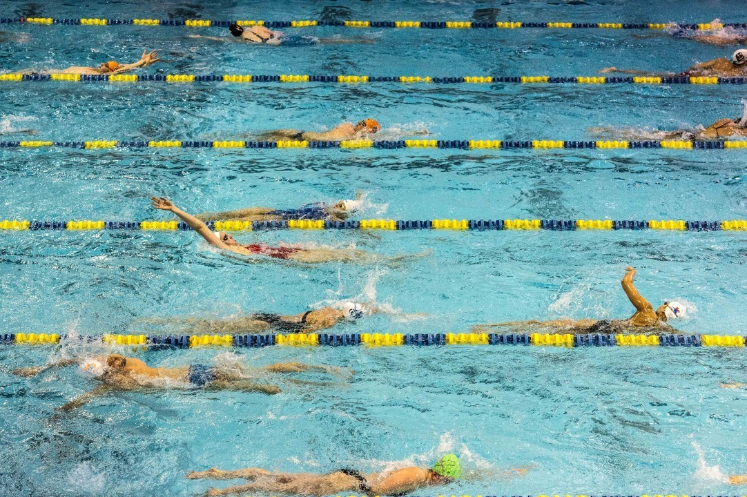 YMCA of Central Florida Hires Pfau As Director of Competitive Swimming