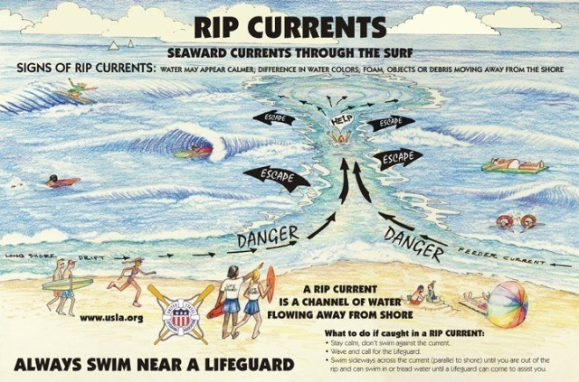 courtesy of the United States Lifesaving Association