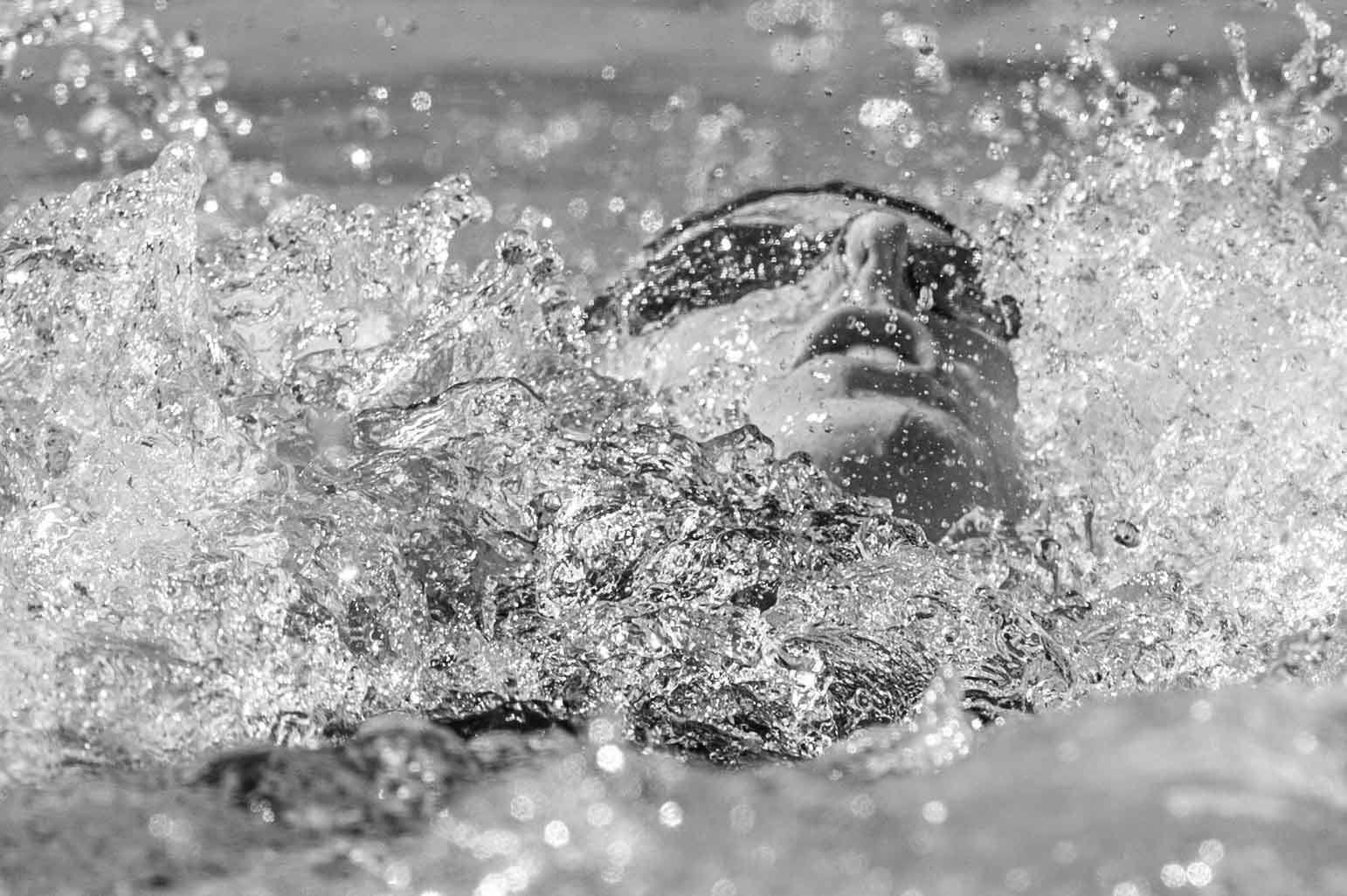 81dd7ef24 Swim Job  Kiefer Swim Products seeks Team Sales Representative