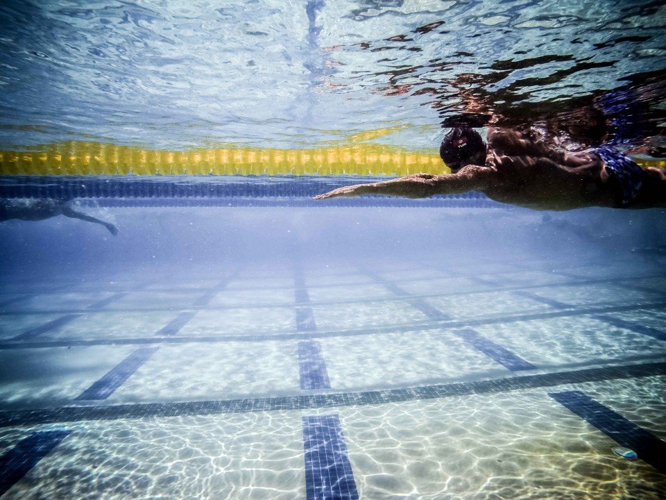 Swim Job: Technique Swim Academy @ Harvard & Northeastern seeks Coaches