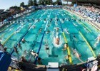 Arena Pro Swim Santa Clara Stock by Mike Lewis-2