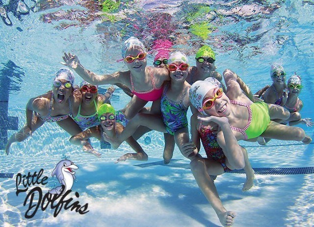 Little Dolfins  (courtesy of Dolfin & Mike Medby)