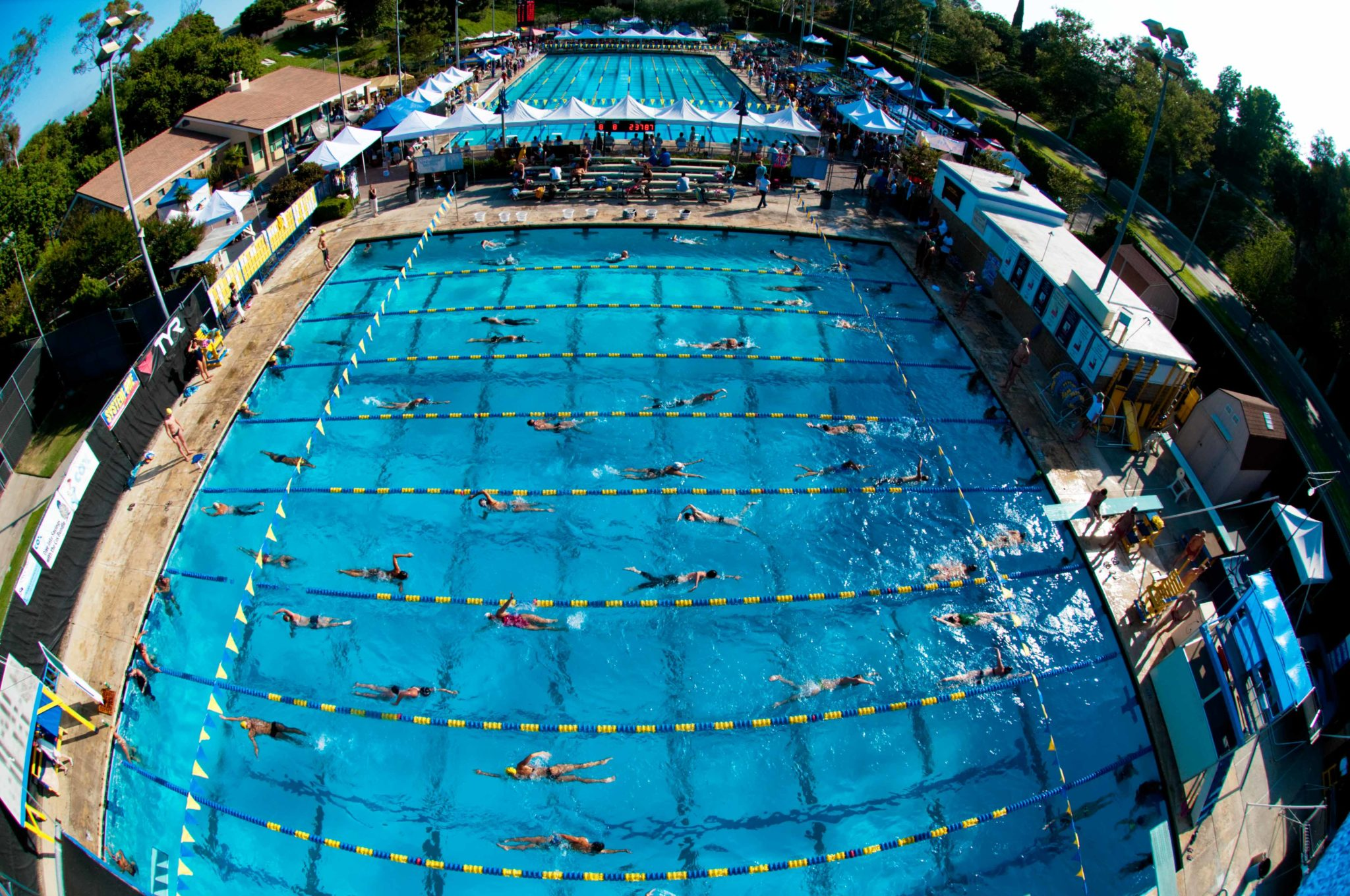 Mission viejo nadadores expecting road block in aquatic - San diego state university swimming pool ...