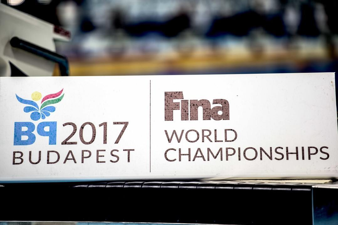 FINA Announces Standards for 2017 World Championships in Budapest