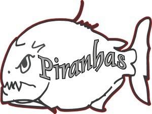 Princeton Piranhas Swim Team