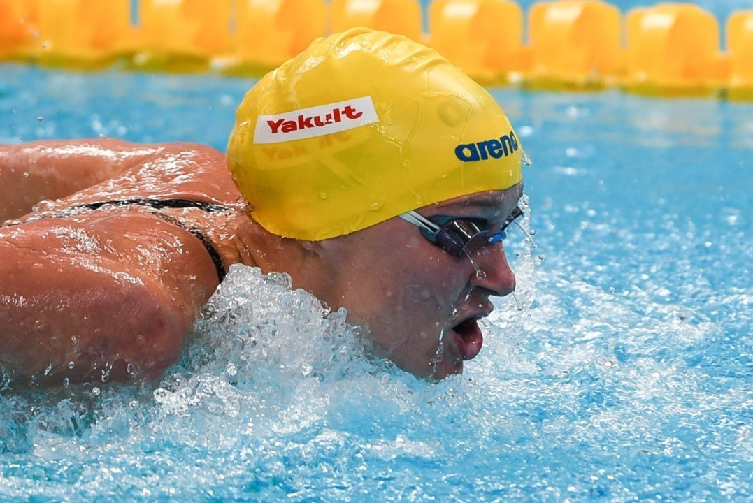 Meeting de Doha (3): Sjöström gagne deux 100 sans être à cent pour cent