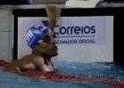 Nicolas Oliveira. Torneio Open de Natacao na Unisul. 18 de dezembro de 2015, Palhoca, SC, Brasil. Foto: Satiro Sodré/ SSPress/CBDA