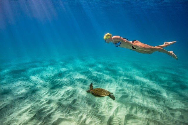 Masters world record holder Cynthia Lewis with sea turtles in Kauai (photo: Mike Lewis)