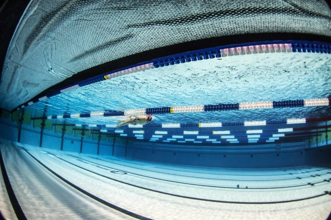Maximizing Freestyle Efficiency: 41 Degrees of Power
