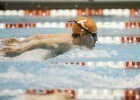 KNOXVILLE,TN - NOVEMBER 22, 2015 - Sam McHugh during the Tennessee Invitational Allan Jones Aquatic Center in Knoxville, TN. Photo By Craig Bisacre/Tennessee Athletics